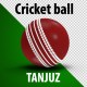 Cricket Ball Rotations and Background - VideoHive Item for Sale