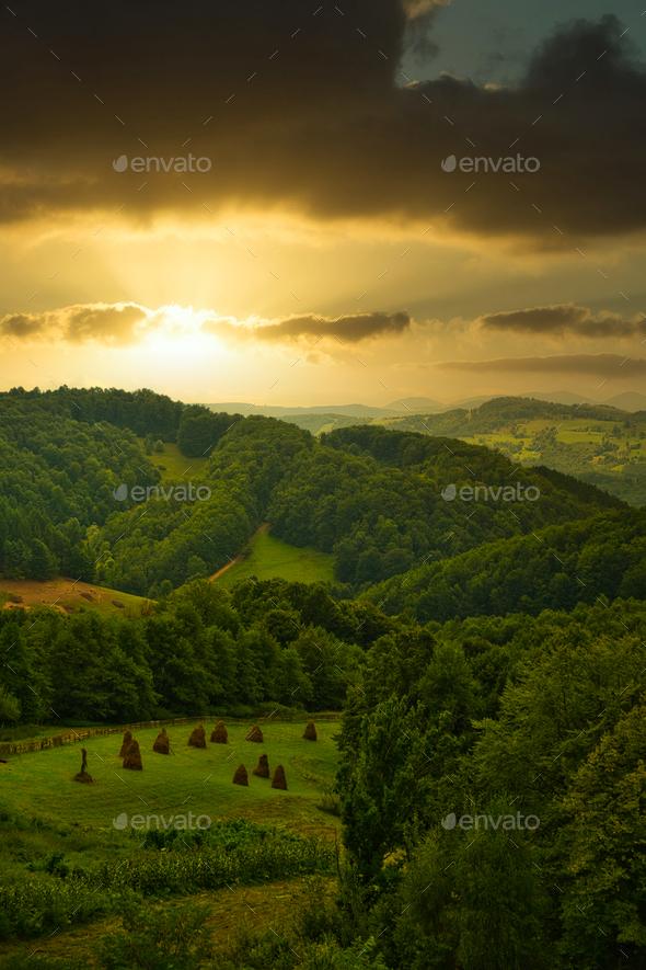 Rural landscape - Stock Photo - Images