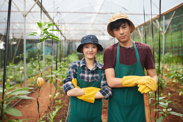 Cheerful young farm workers - Stock Photo - Images