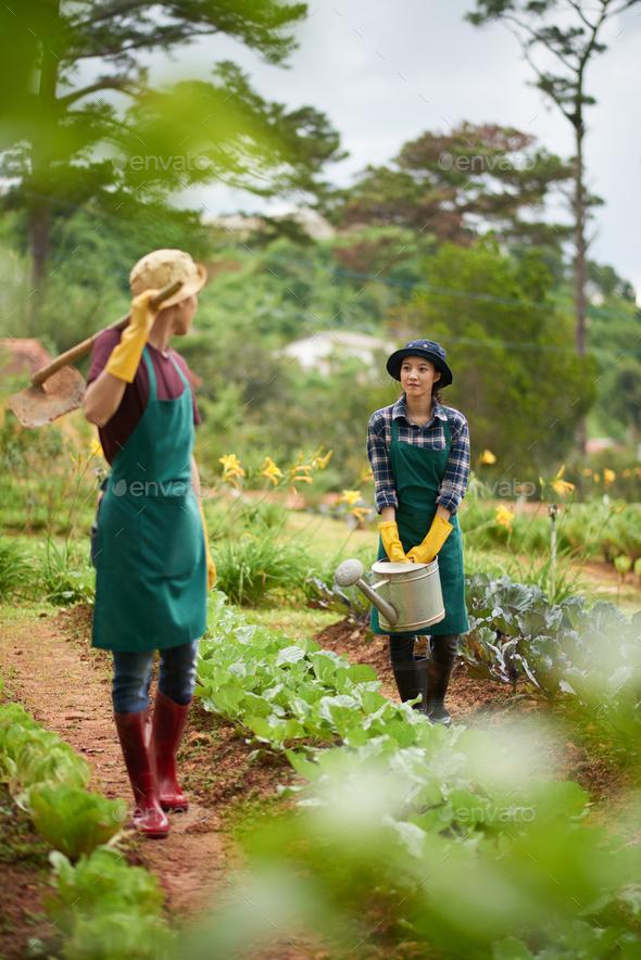 Enjoying work in garden - Stock Photo - Images