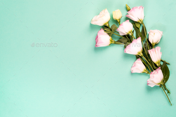 Frame composition with empty space in the center made of blooming pink eustoma, flat lay. Floral - Stock Photo - Images