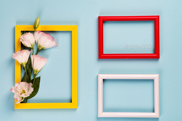 Empty yellow frame with flowers eustoma on blue paper background with copy space. Flat lay. Love - Stock Photo - Images