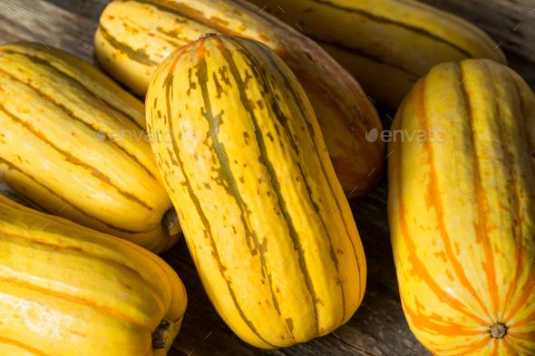 Raw yellow Organic Delicata Squash - Stock Photo - Images