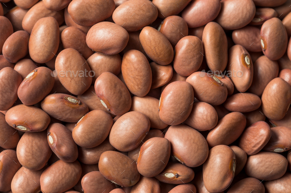 Raw Organic Dry Pink Beans - Stock Photo - Images