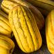 Raw yellow Organic Delicata Squash - PhotoDune Item for Sale