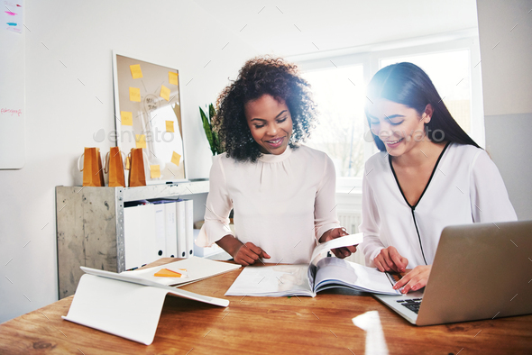 Two businesswomen browsing documents sitting at laptop - Stock Photo - Images
