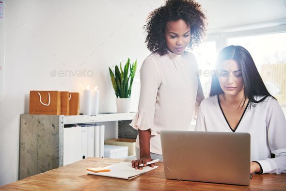 Two young female business partners - Stock Photo - Images