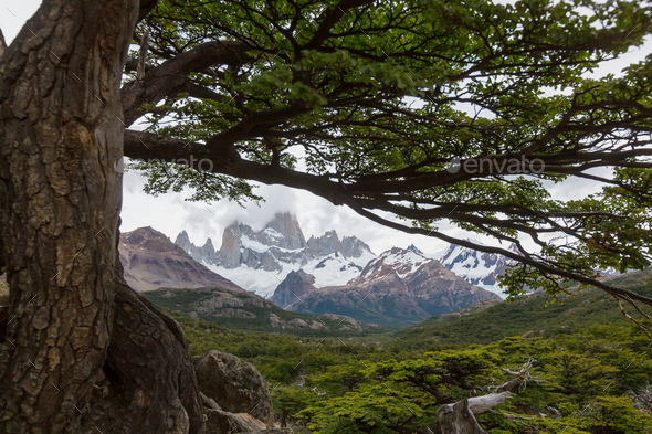Patagonia - Stock Photo - Images