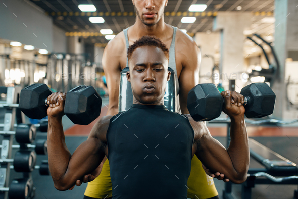 Two men doing exercise with dumbbells on bench - Stock Photo - Images