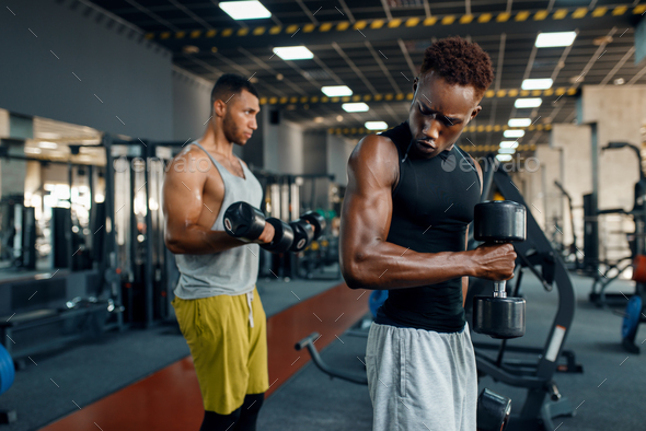 Two athletes doing exercise with dumbbell in gym - Stock Photo - Images