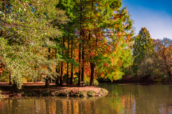 Fall Colors reflected - Stock Photo - Images