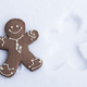 Gingerbread Man  in the Snow - PhotoDune Item for Sale