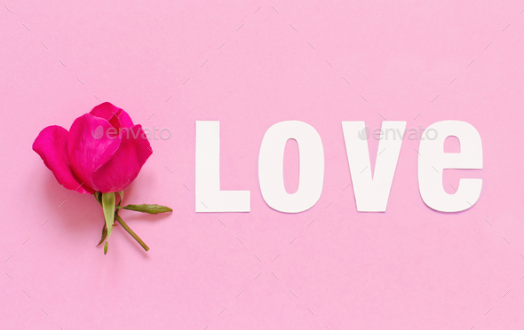 Flower and word LOVE on a light pink background - Stock Photo - Images