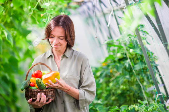 Young woman with basket full of vegetables in the greenhouse. Time to harvest - Stock Photo - Images