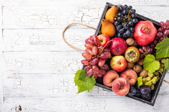 Various autumn fruits. Harvest concept - Stock Photo - Images