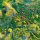 Aerial view green steppe nature in Don region - PhotoDune Item for Sale