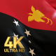 Papua New Guinea Flag - 4K - VideoHive Item for Sale