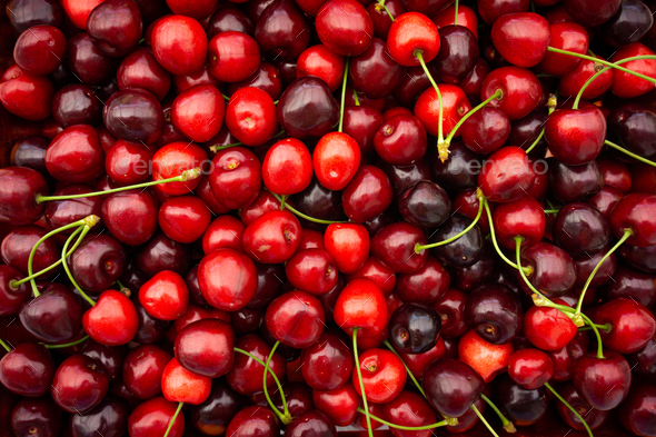 Cherry. Fresh organic berries. Fruit background - Stock Photo - Images