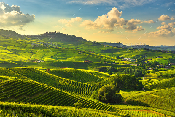 Langhe vineyards view, Barolo and La Morra, Piedmont, Italy Europe. - Stock Photo - Images