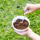 Person apply spent grounded coffee powder as natural plant fertilizer - PhotoDune Item for Sale