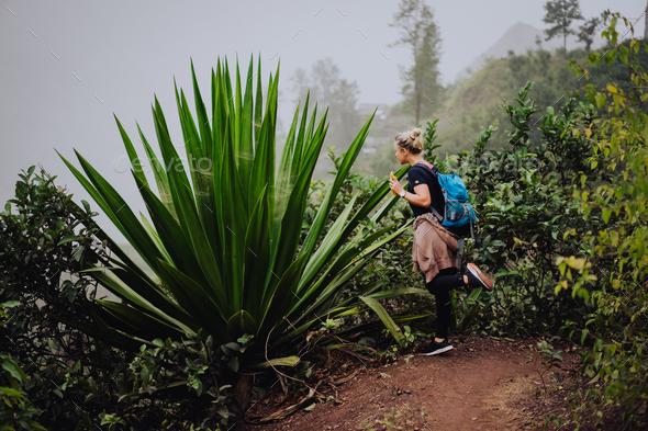 Female traveler amire huge endemic agave plant on Santo Antao Cape Verde - Stock Photo - Images