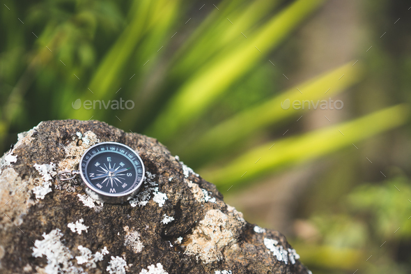 Navigation concept - Analogical compass laying on the rocky stone. Blurred agave plant leaves in - Stock Photo - Images