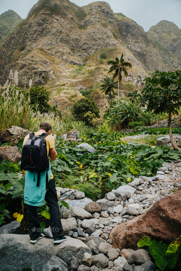 Male photographer in verdant valley covered with lotus plants. Santo Antao Cape Verde - Stock Photo - Images
