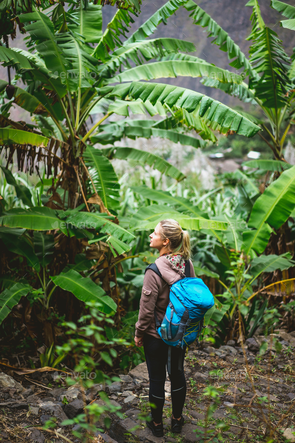 Blond young women with blue backpack admire banana plantation on the trekking route to paul valley - Stock Photo - Images