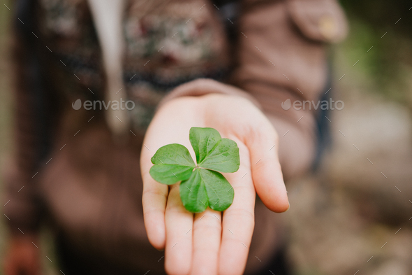 Hand over one clover leave on stretched female hand palm - Stock Photo - Images