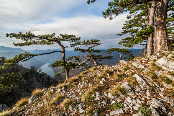 Viewpoint in mountain - Stock Photo - Images