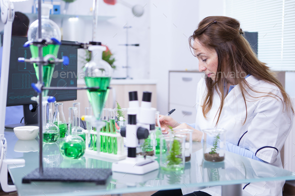 Academic female scientist in a microbiology laboratory - Stock Photo - Images