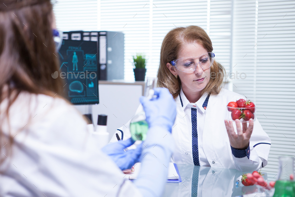 Caucasian female scientist looking at strawberries in her research lab - Stock Photo - Images