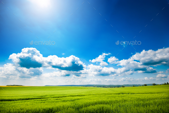 Day natural view at German pastures and cornfields under blue cloudy skies spring time - Stock Photo - Images