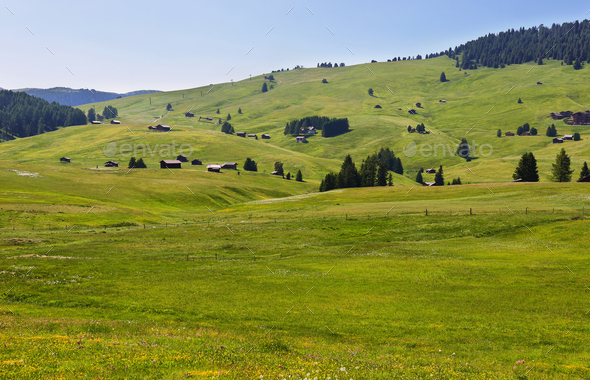 Alpe di Siusi or Seiser Alm, Dolomites Alps , Italy - Stock Photo - Images
