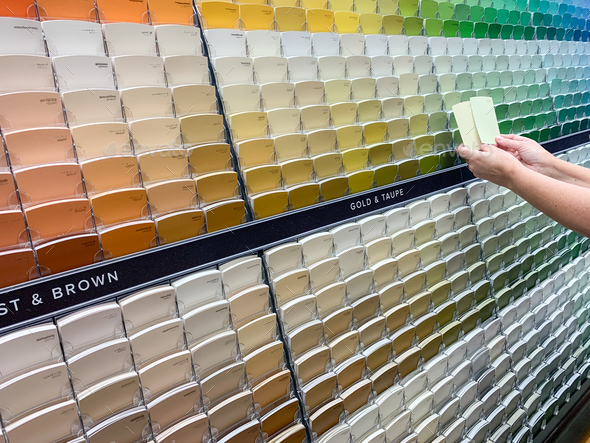 Customer Views Paint Swatches In Paint Store at Colourful Sample Rack - Stock Photo - Images