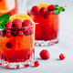 Raspberry Cranberry Sangria Punch or Mojito in glass with orange slices and mint - PhotoDune Item for Sale