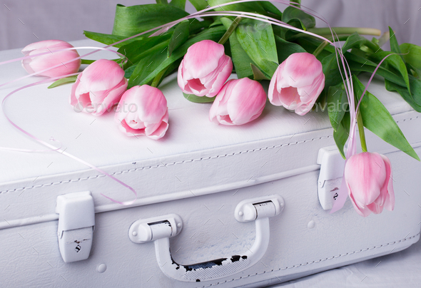 Pink tulips, white vintage suitcases.Concept Holiday Valentine Day.Greeting Card,Gift. - Stock Photo - Images