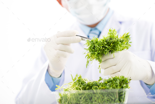 Carrying out Quality Control - Stock Photo - Images