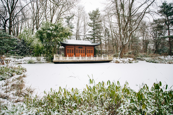 Japanese temple in the winter Park. Beautiful view of the temple in the Park. - Stock Photo - Images