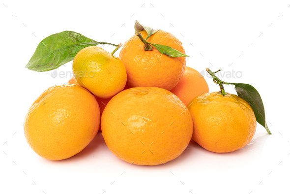Tangerines with leaves on a white background - Stock Photo - Images