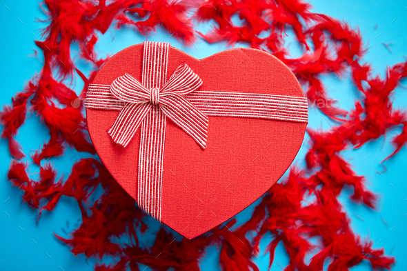 Red, heart shaped gift box placed on blue background among red feathers - Stock Photo - Images