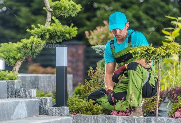 Backyard Garden Job - Stock Photo - Images