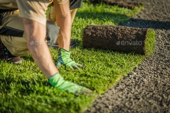 Lay Natural Grass Turfs - Stock Photo - Images
