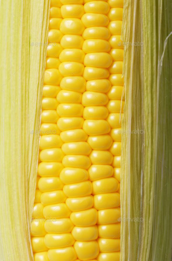 Ripe fresh organic sweet corncob with leaf closeup background - Stock Photo - Images