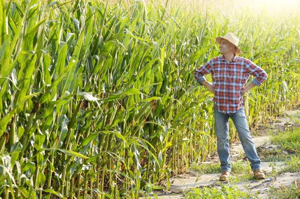 Farmer - Stock Photo - Images