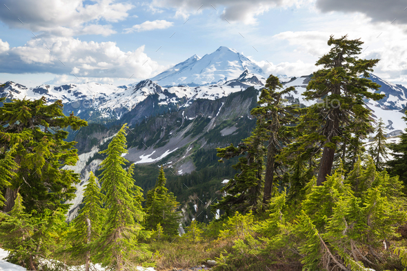 Mt Baker - Stock Photo - Images