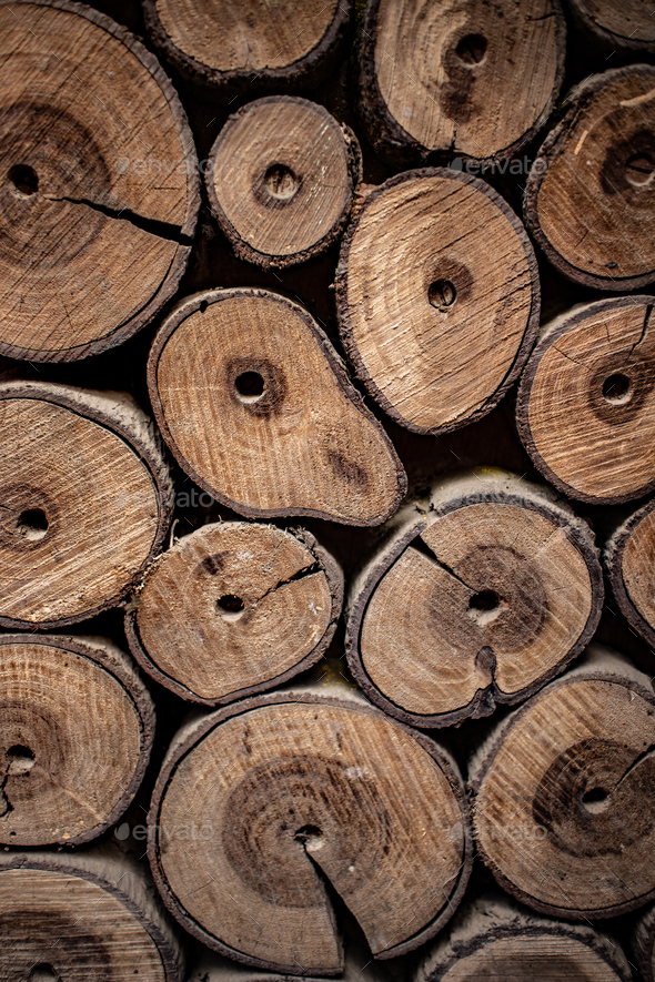 Wooden natural logs as background - Stock Photo - Images