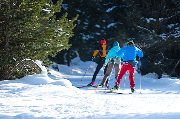 Group of Nordic skiers - Stock Photo - Images