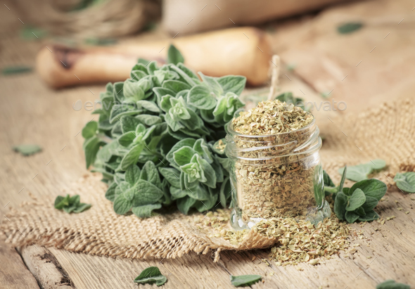 Dried and fresh oregano - Stock Photo - Images