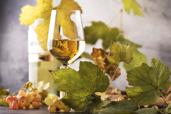 White wine glass and wine bottle - Stock Photo - Images